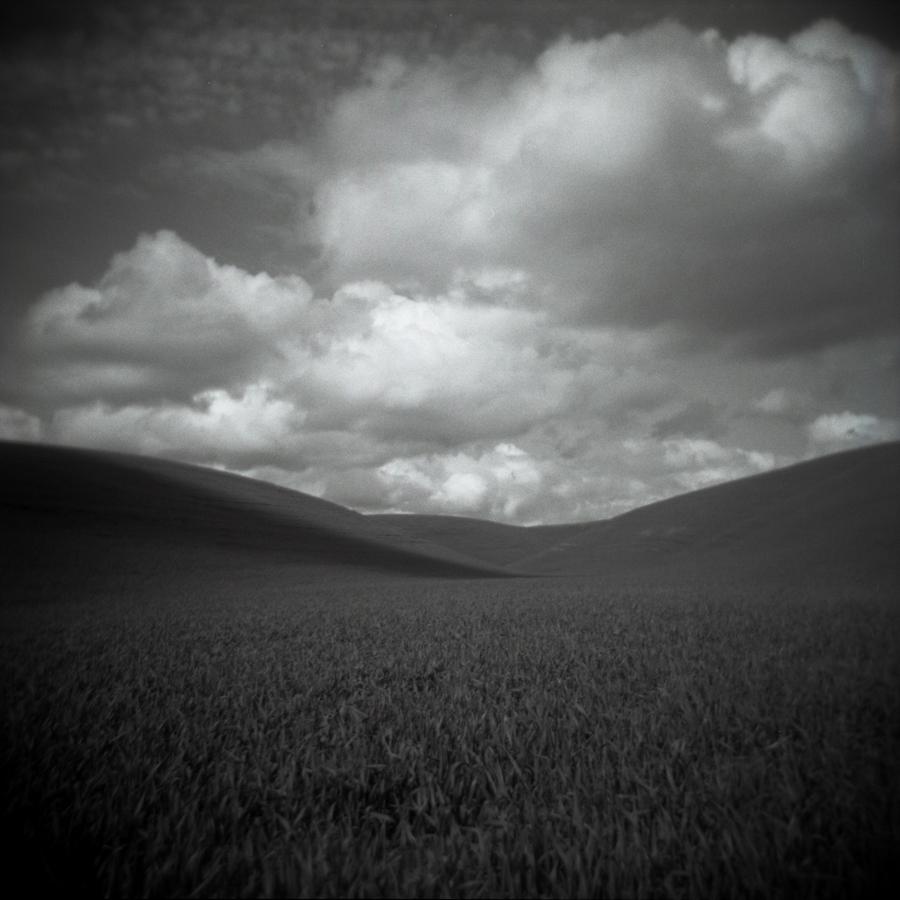 Film Series: Monochromatic Holga – under an ardent sky