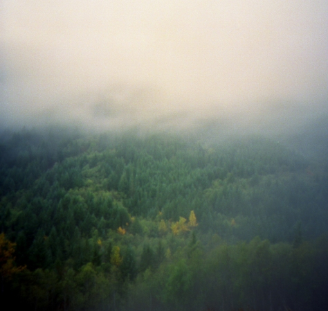 Mists in the Mountains